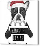 Xmas is coming Canvas Print