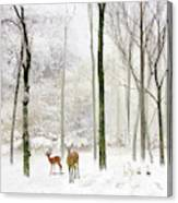 Forest Winter Visitors Canvas Print