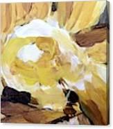 Yellow #4 Canvas Print