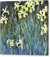 Yellow Irises - Digital Remastered Edition Canvas Print