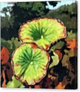 Autumn Lotus Leaves Canvas Print