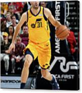 Georges Niang Canvas Print