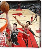 San Antonio Spurs vs. Chicago Bulls Canvas Print