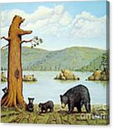 27 Bears Canvas Print