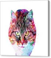 Abstract Charismatic Cat  Canvas Print
