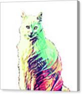Abstrat Angora Cat  Canvas Print