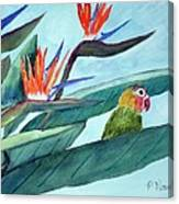 Bird In Paradise Canvas Print
