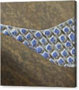 Blue Pattern on Brown Background Canvas Print