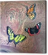 California Butterflies Canvas Print