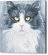 Cat Print Pet Portrait Artist For Hire Commission Canvas Print