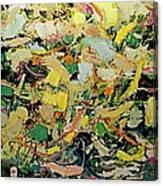 Cotton Blossom Canvas Print