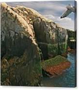 Crusin the Rocks Canvas Print