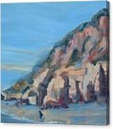 Dog Beach      Del Mar Ca Canvas Print