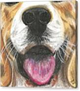 Dog Face Canvas Print