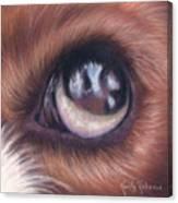 Dog Eye Study Canvas Print