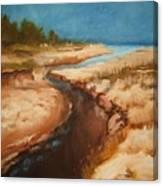Dry rivebed Canvas Print