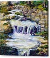 Fern Dell Creek Noon Canvas Print