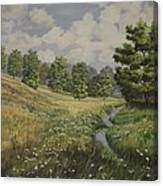 Field And Stream Canvas Print