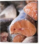 Fresh Salmon Canvas Print
