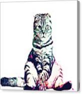 Funky Cat Canvas Print