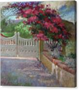 Gateway Splendor - Catalina Island Canvas Print
