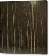 Hinterland Canvas Print