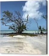 Key West Waters Canvas Print