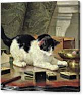 Kitten's Game - Digital Remastered Edition Canvas Print