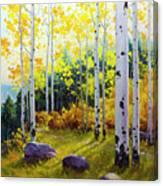 Late Afternoon Aspen Vista Canvas Print