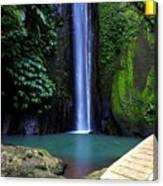 Lonely waterfall Canvas Print