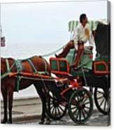 Lovely Transportation in Cozumel Canvas Print
