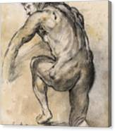 Male nude drawing Canvas Print