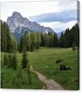 Meadow in the dolomites Canvas Print