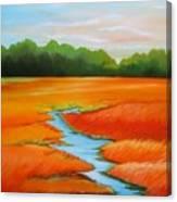 Meandering Stream Canvas Print