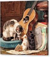 Musician - Digital Remastered Edition Canvas Print