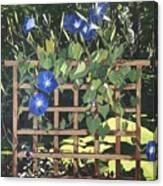 Oh Morning Glories Canvas Print