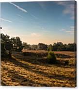Panorama - Sunrise Bergerheide Canvas Print