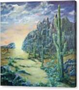 Path of Sunlight Canvas Print