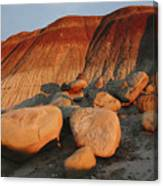 Petrified Forest at dusk Canvas Print