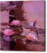 Pond Blossoms - water lilies Canvas Print