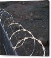 Razor wire on a fence on the coast Canvas Print