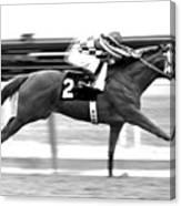 Secretariat, Belmont Stakes, back stretch Canvas Print