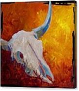 Texas Longhorn Skull Canvas Print