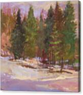 The Road Home  Plein Air Canvas Print