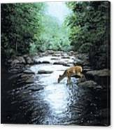 The Watercooler Canvas Print