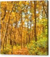 Through The Autumn Forest Canvas Print