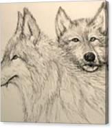 Timberwolf Canvas Print