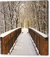 Towards The Winter Wonderland Canvas Print