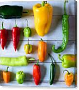 Variety of fresh peppers Canvas Print