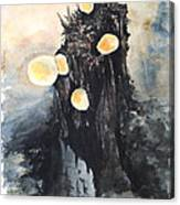 Vermont Mushrooms Canvas Print